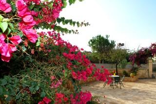 facilities blazis house garden